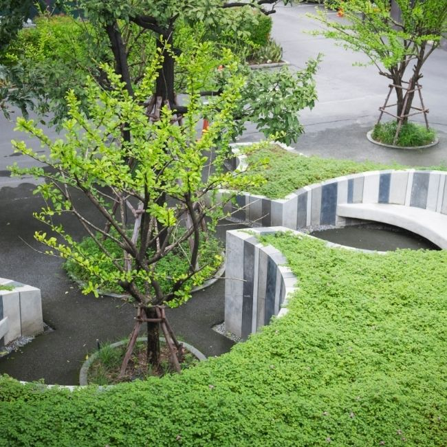 Landscapingserviceinedmonton2