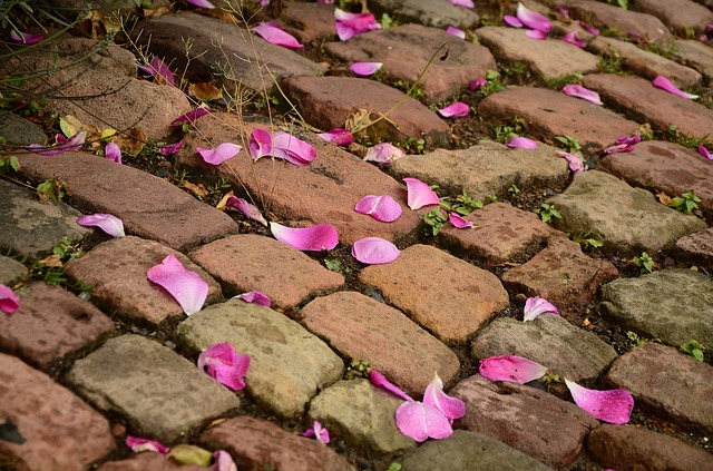 Use bricks as a pavers. This will make your garden attractive.