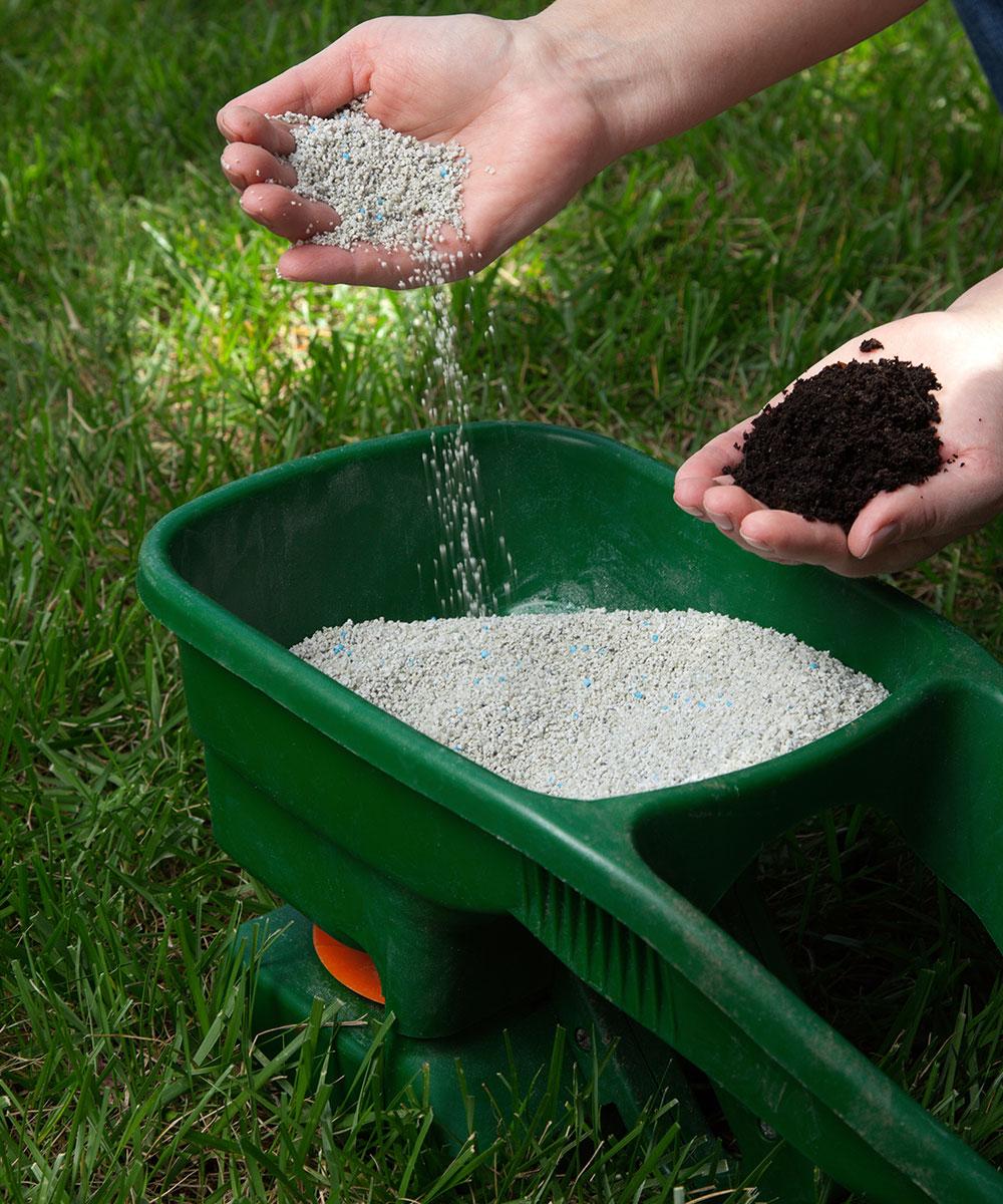 Fertilization service in Edmonton by My Landscaping