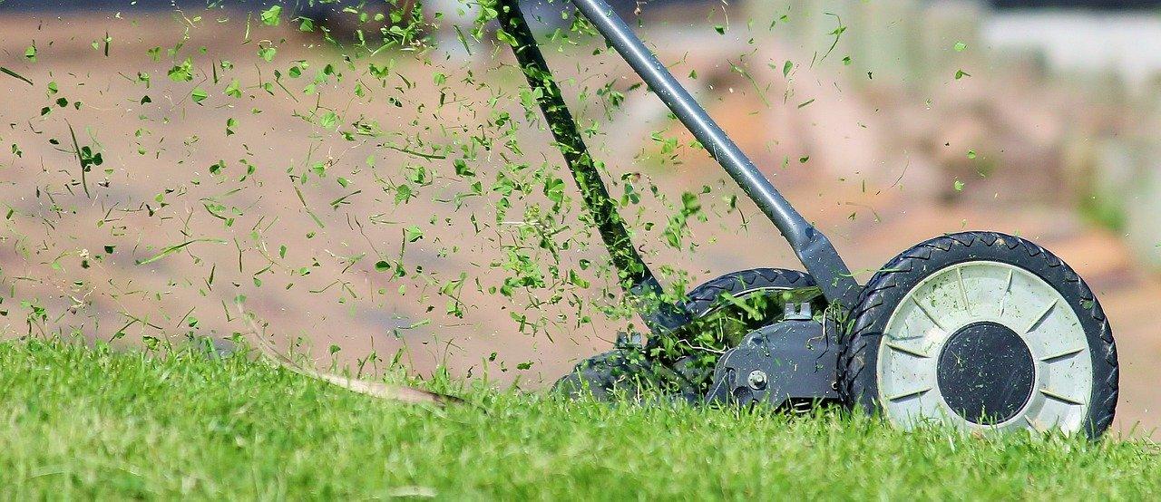 Regular lawn care service in Edmontond