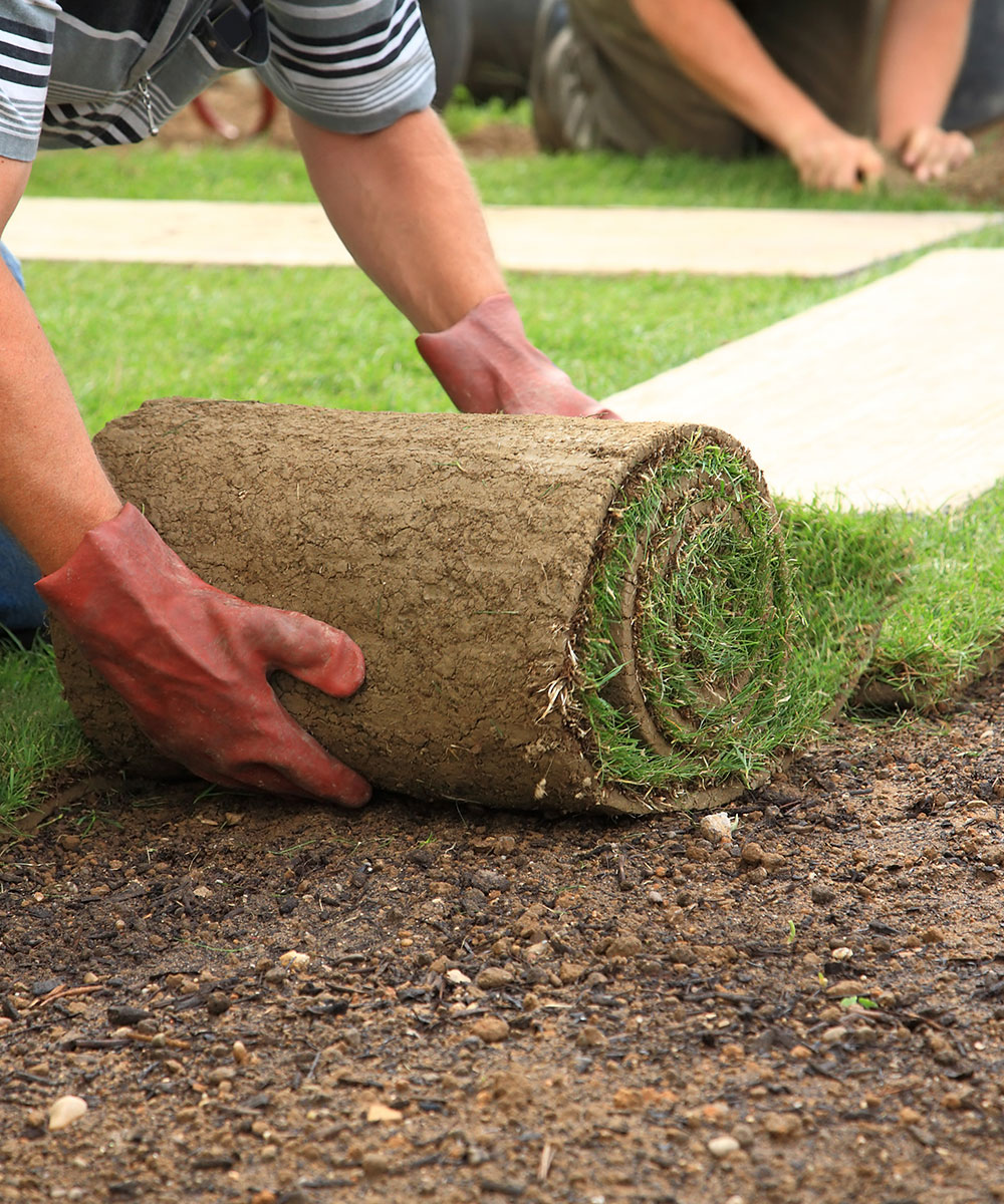 My Landscaping offer lawn installation services in entire Edmonton region. We offer SOD, Hydroseed, SEED and artificial turf installation to our customers.