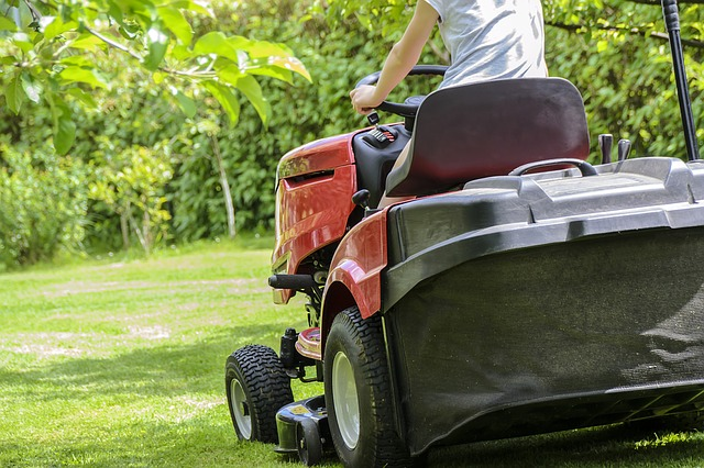 mowing the grasslawncare