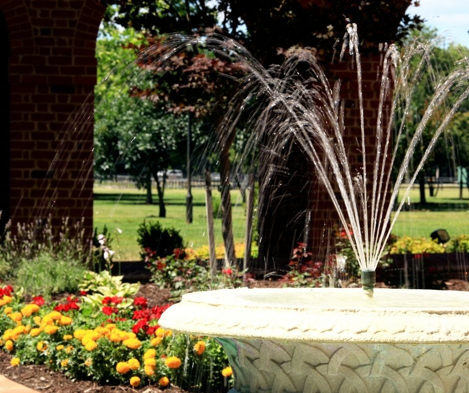 How can water features change the landscape of your home?