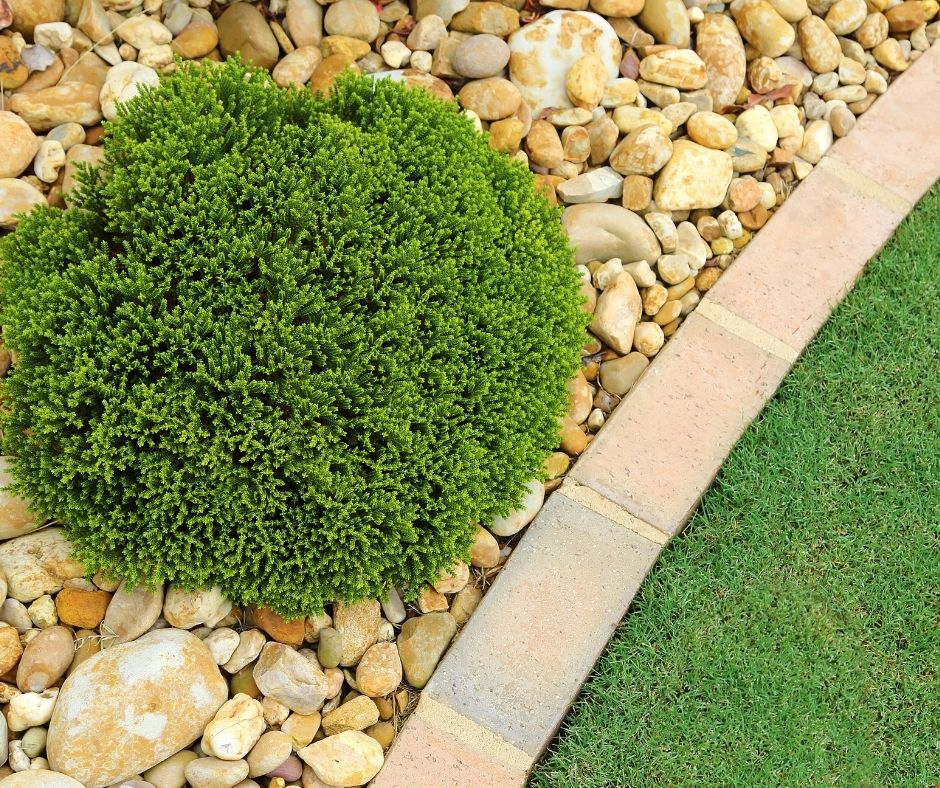 How to maintain the landscape and the garden of your home